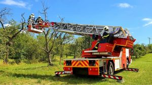 H1 - Rettung Tier aus >3m Höhe